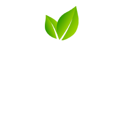 Beacon Club